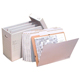 "AOS The VFile 28""x12""x20"" Vertical File with 10 VFolder25 (VFile25)"
